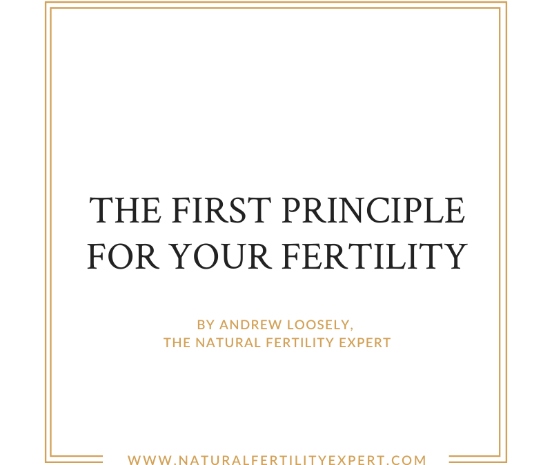 The First Principle For Your Fertility