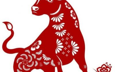 Chinese New Year and Your Fertility