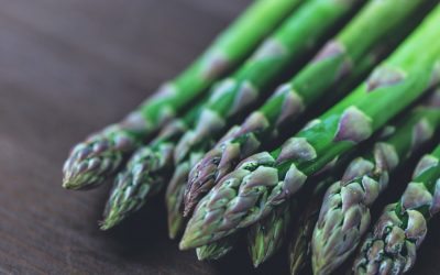 Asparagus – Egg and Sperm DNA Health