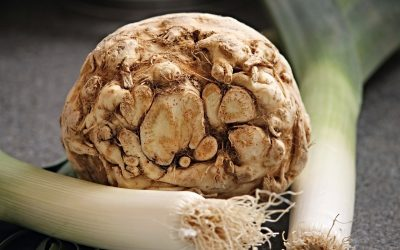 Celeriac, Antioxidants, and Fertility