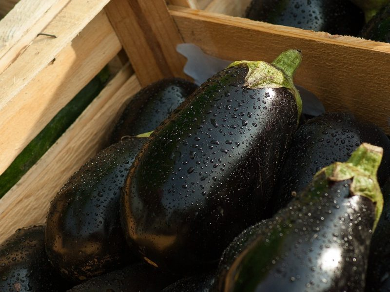 Is Aubergine bad for iron levels