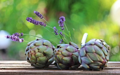Is Artichoke A Forgotten Fertility Food?