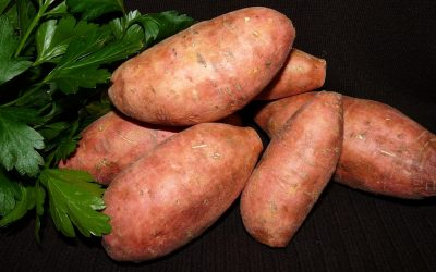 Do Sweet Potatoes have too much sugar?